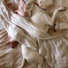 fotogaléria, pes a dieťa, spanie psa a bábätka, spánok