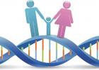 AKO BUDE VYZERAŤ MOJE DIEŤA: Nazrite do tajov genetiky