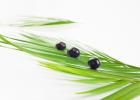 Liečivé rastliny a dýchacie cesty