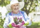 Babičkine zlepšováky do záhrady