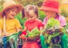 Odhaľujte tajomstvá prírody v záhradke: To som sadil sám!
