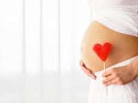 DRUHÝ TRIMESTER: Ako rastie bábätko v brušku?