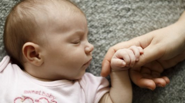 Fakty o bábätkách