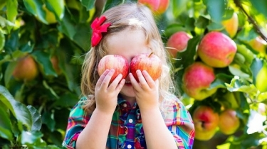 Prečo NIE ovocie na raňajky?