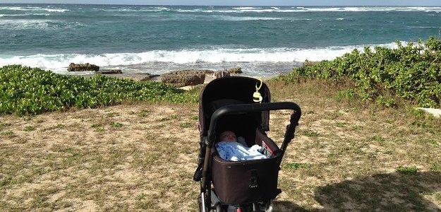 Život na Havaji