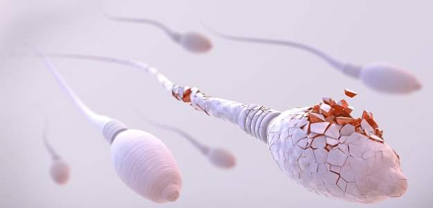 Spermiogram a koronavírus