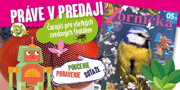 Pre školákov siestička, novučičká Zornička!