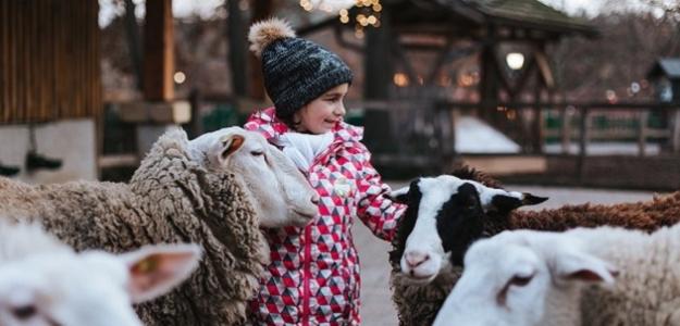 Vianočná nálada vo FAMILYPARKU