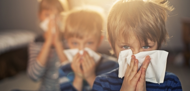 Alergia na roztoče