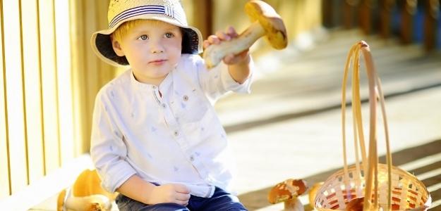 Patria huby do detského jedálnička? Ak áno, tak odkedy?