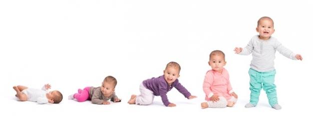 Vývin dieťaťa: v ktorej fáze práve ste?