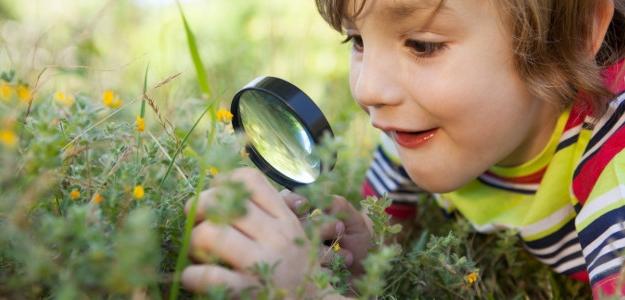 Rady pre rodičov: Ako vdeťoch pestovať vzťah kprírode?
