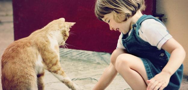 Ako deťom vysvetliť smrť zvieracieho kamaráta?