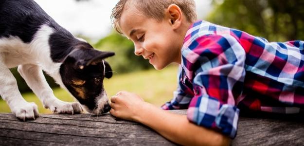 Strach zo psa: Celoživotná trauma alebo banalita?