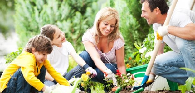 babkine zlepšováky, záhrada, deti pomáhajú v zahrade, sadiť, bylinky