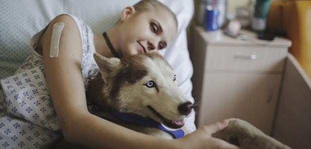 Dojímavé momenty: Pes lieči boľavé duše osamelých