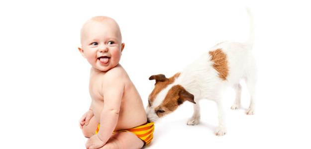 Pre všetkých milovníkov psov: bábätko a pes - patria k sebe?