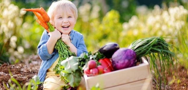 PREHĽAD: S ktorým ovocím a zeleninou KEDY začať?