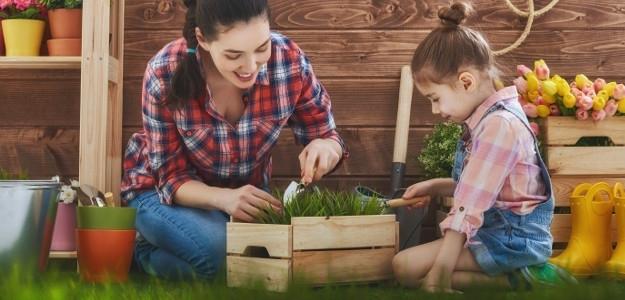 Sadíme v záhradke: babkine zlepšováky pre záhradkárky