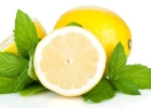 Mätová limonáda