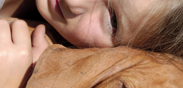 Canisterapia: terapia psom aj pre hyperaktívne deti