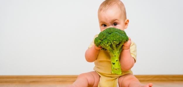 Morčací krém na brokolici