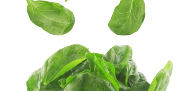 Zeleninová polievočka