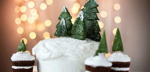 Snehová torta s ovocím