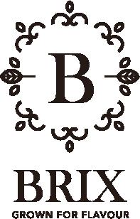Brix_logo.png